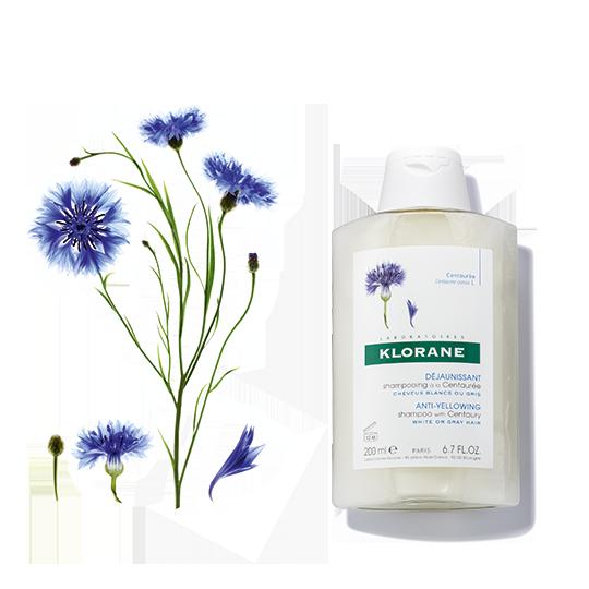 Centaury shampoo 540x540 0917