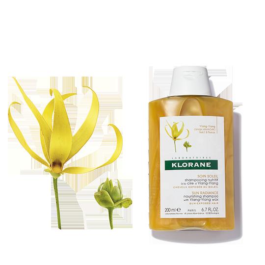 Ylangylang shampoo 540x540 0917 1