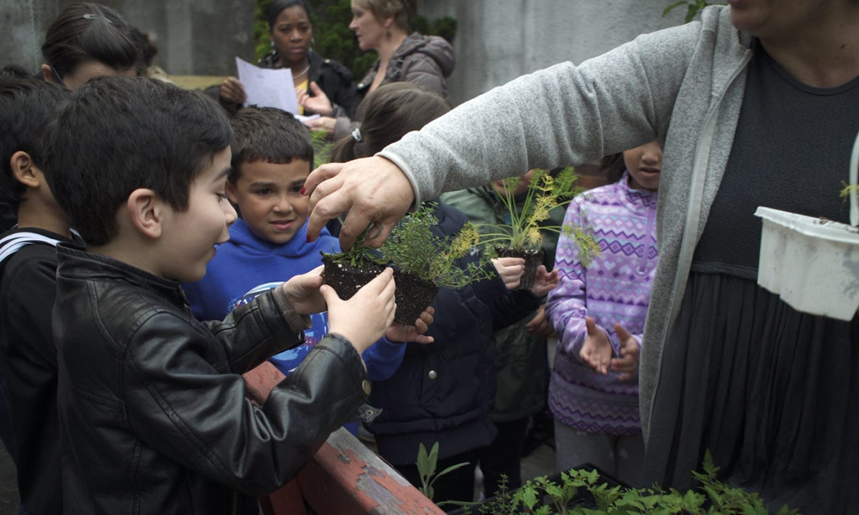 YTeacher handing a plant to a smiling boy